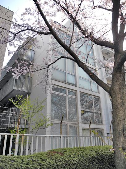 140408大横川桜2.jpg