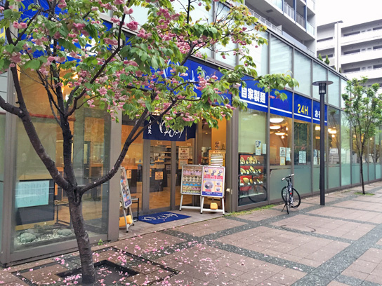 160424ゆで太郎豊洲店.jpg