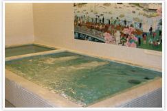 190701入船湯浴槽.jpg